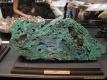 2nd_bstu_visit_naturhistorisches_museum_012