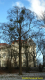 iiv_2013_vienna_album_novikova_zinaida_044
