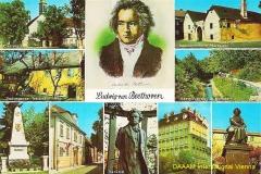 1st_daaam_1990_vienna_beethoven_haus_am_pfarrplatz_in_heiligenstadt_009