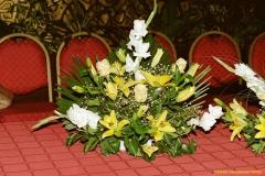 daaam_2000_opatija_mix_tinas_flowers_037