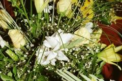 daaam_2000_opatija_mix_tinas_flowers_039