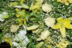 daaam_2000_opatija_mix_tinas_flowers_043