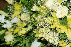 daaam_2000_opatija_mix_tinas_flowers_044