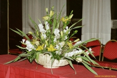 daaam_2000_opatija_mix_tinas_flowers_045