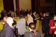 daaam_2008_trnava_closing_best_awards_042