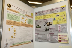 daaam_2009_vienna_poster_session_005