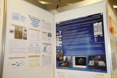 daaam_2009_vienna_poster_session_006