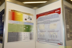daaam_2009_vienna_poster_session_007