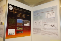 daaam_2009_vienna_poster_session_016