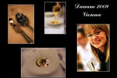 daaam_2009_vienna_album_jan_liska_002