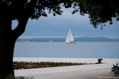 daaam_2010_zadar_album_catalin_budjei_012