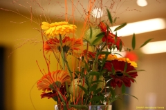 daaam_2011_vienna_06_opening_ceremony_224