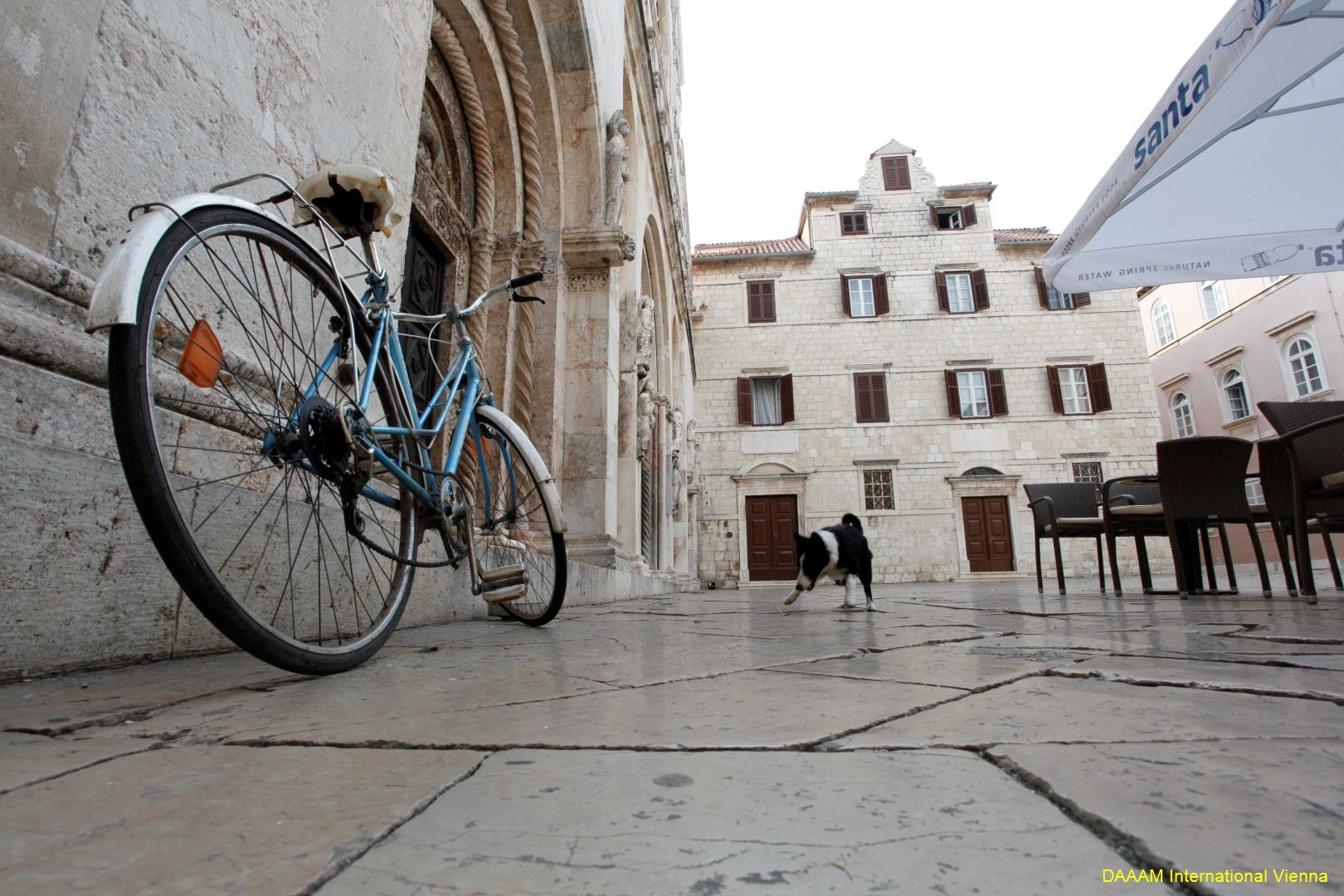 DAAAM_2012_Zadar_00_Zadar_City_057