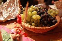 daaam_2014_vienna_07_private_vip_invitation_in_ulrichskirchen_021