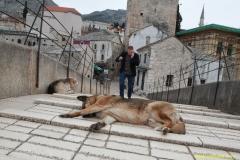DAAAM_2016_Mostar_01_Magic_City_of_Mostar_162
