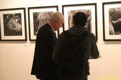 DAAAM_2016_Mostar_02_Art_Exhibition_Dr_Markus_Stopper_154