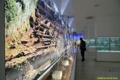 daaam_2017_zadar_16_the_6th_ds_museum_of_ancient_glass_tour_059