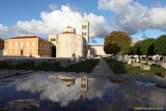 daaam_2017_zadar_17_the_6th_ds_city_walk_033