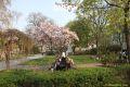 1st_bstu_visit_to_vienna_introduction_to_vienna_044