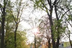 1st_bstu_visit_to_vienna_wolkersdorf_008