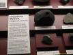 2nd_bstu_visit_naturhistorisches_museum_026