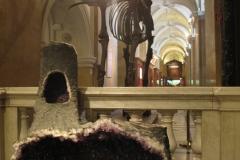 2nd_bstu_visit_naturhistorisches_museum_011
