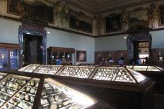 2nd_bstu_visit_naturhistorisches_museum_020