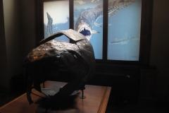 2nd_bstu_visit_naturhistorisches_museum_043
