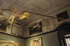 2nd_bstu_visit_naturhistorisches_museum_053