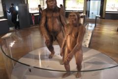 2nd_bstu_visit_naturhistorisches_museum_069