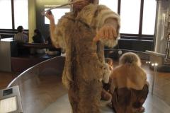 2nd_bstu_visit_naturhistorisches_museum_071