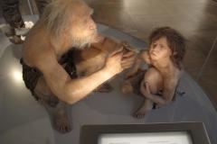 2nd_bstu_visit_naturhistorisches_museum_072