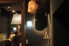 2nd_bstu_visit_naturhistorisches_museum_076