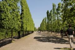 2nd_bstu_visit_schoenbrunn_palace_048