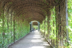 2nd_bstu_visit_schoenbrunn_palace_050