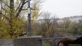iiv_2013_vienna_album_sukhotckii_vladimir__dmitrii_026